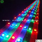 Indicatore luminoso di striscia flessibile di bassa tensione LED dell'UL