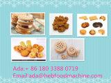 Linha de produção maquinaria do biscoito do biscoito