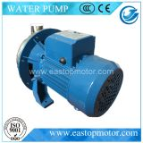 Qdp-S Home Water Pump Use em Domestic, Gardening, Irigation