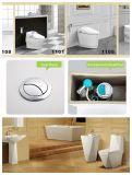 위생 물 저축 Wc 화장실