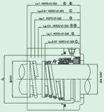 Pumpe (HG9)를 위한 표준 기계적 밀봉
