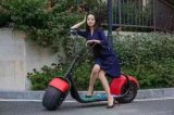 60V 1000W bici elettrica elettrica di Citycoco Harley del motorino della gomma grassa da 18 pollici