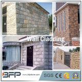 Tuile en pierre d'ardoise de champignon de couche pour la façade, revêtement de mur, panneau de mur