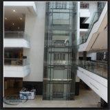 Schnell besichtigen 4 Leute-transparentes Tourismus-Glas-Höhenruder