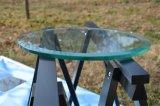أخليت يليّن/يقسم زجاج لأنّ [تبل توب] يتعشّى زجاج لأنّ طاولة زخرفة بيتيّة