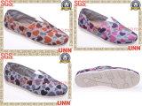 Chaussures de toile classiques (SD6183)