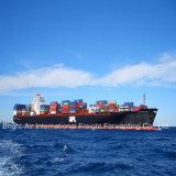 Frete de mar direto do transporte do significado do transporte do frete de China a Oakland, EUA