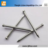 Hot DIP Galvanized Finishing Nails Direct Factory