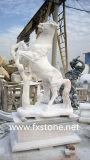 Pegasus di marmo bianco intagliato per la decorazione del giardino