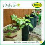 Il bene mobile economico del sacchetto della piantatrice del giardino di Onlylife pp coltiva il sacchetto