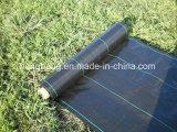 Rete fissa nera del limo tessuta pp di verde per costruzione