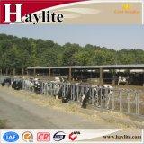 Painel de travamento automático do Headlock da vaca quente da venda para o equipamento de exploração agrícola do gado