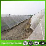 [هدب] بيضاء زراعيّة مضادّة حشرة شبكة (من مصنع)