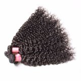 Weave человеческих волос Remy скручиваемости ранга 8A свободно образца естественный черный бразильский Jerry
