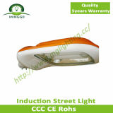 80W~100W Induction Street Light con il CE RoHS Approvel di Outdoor Fiting