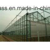 het Glas van de Zaal van de Douche van 12mm met de Hardware van het Glas