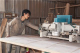 Puerta de madera interior de la buena calidad (DS-6024)