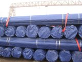 Tubulações sem emenda de aço de carbono de API/ASTM