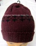 Chapeau de tricotage de jacquard de mode avec le chapeau de Beanie de manchette (Hjb035)