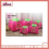 분홍색에 있는 짧은 견면 벨벳 딸기 모양 두 배 사용 애완 동물 집