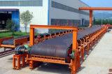 Nastro trasportatore dei sistemi di trasportatore della strumentazione di maneggio del materiale di alta qualità