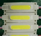 High Performance of 2W COB Injection LED Module