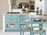 2016 Governi variopinti di immagazzinamento in gli armadi da cucina della casa della mobilia di legno solido