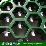Recyled 2016 neuestes Hexagon-Fahrstraße-Gras-Rasterfeld von China