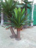 큰 부채꼴 야자수 5m의 인공적인 플랜트 그리고 꽃