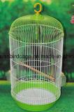 Poudre de qualité enduisant la mini cage d'oiseau