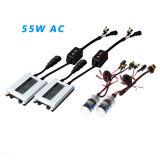 Auto Accesssories dünnes Canbus H1 H3 H4 H7 H8 H119004 9005 9006 9007 35W 55W 75W 100W VERSTECKTE Scheinwerfer