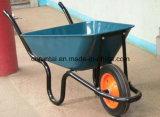좋은 품질 남아프리카 모형 바퀴 무덤 (Wb3800)