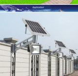 Intense lampe solaire de pelouse de lumière d'inondation du détecteur de mouvement de luminosité 10W-30W