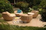 Jogos ao ar livre do sofá, mobília do Rattan do pátio, jogos do sofá do jardim (SF-314)