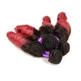Armure de cheveux de courbure de ressort de couleur de tonalité de la vente en gros deux