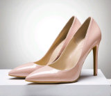 Fashion High Heel Classical Pumps Dress Shoes (HCY02-1751)