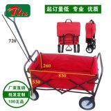Populäre Dienstfaltende Fisch-Lastwagen-Vierradlaufkatze Fw3017