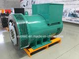 Schwanzloser Generator mit Pmg-Erregung