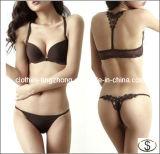 As senhoras novas do sexo da forma suportam roupa interior ajustado da cuecas do sutiã quente do projeto
