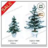 [وهيت كريستمس] بيضاء [إكسمس] شجرة