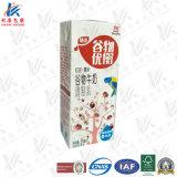 Carton à jus de fruits de haute qualité au meilleur prix
