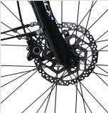 Bicyclette électrique de batterie au lithium avec le moteur de l'amusement 8