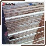 Película fenólica de 18 milímetros enfrenta madeira compensada para o mercado das Filipinas