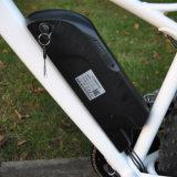Neuer fetter Gummireifen-Gebirgselektrisches Fahrrad des Entwurfs-36V/48V