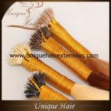 倍によって引かれる灰のブロンドのNanoリングの毛の拡張