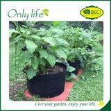 Onlylife 가동은 튼튼한 정원 재배자가 부대를 증가할 것을 느꼈다