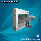 Indicatore luminoso di inondazione eccellente di risparmio di energia LED di Ledsmaster 160 Lm/W 240watt