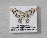 Stampante della garanzia da 1 anno e delle mattonelle di ceramica di basso costo