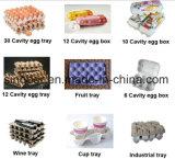 La bandeja del huevo hace el fabricante del rectángulo de la cadena de producción de la máquina/de máquina de la bandeja del huevo/del embalaje de huevos