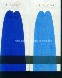 Organisch Pigment Snelle Blauwe BS
